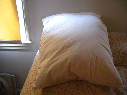 Pillow_L