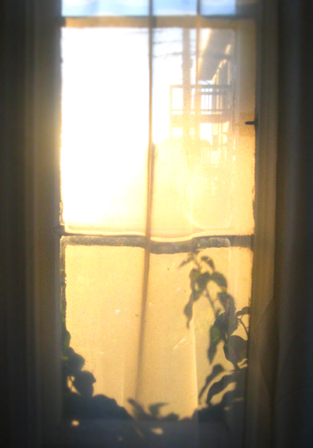 Frontwindow_L