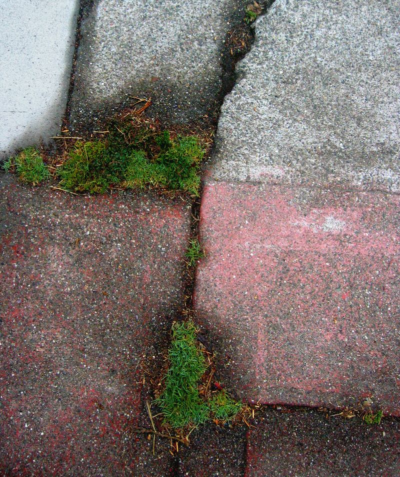 Sidewalkcracks_L