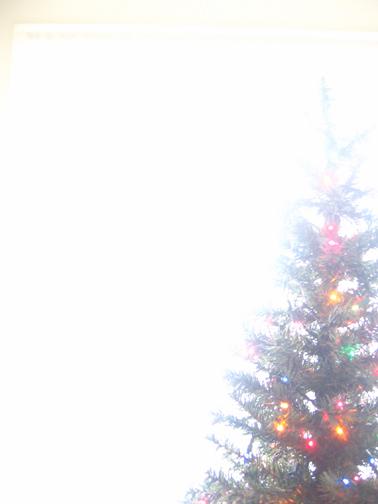 Treelights_L
