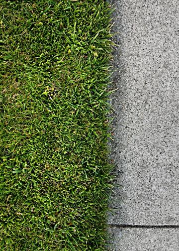 Grassandsidewalk_L