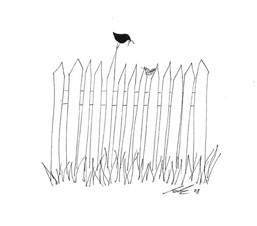 Birdonfencedrawing